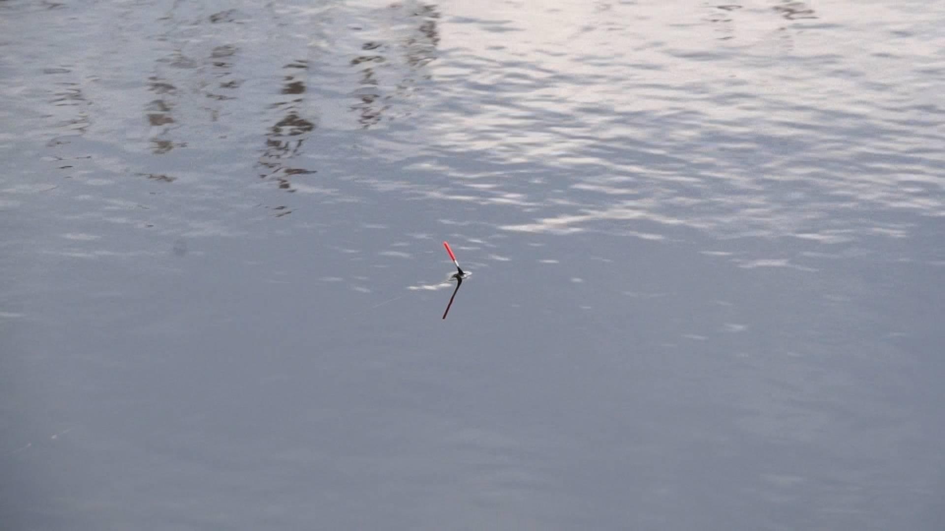 тверь рыбак чайка сайт
