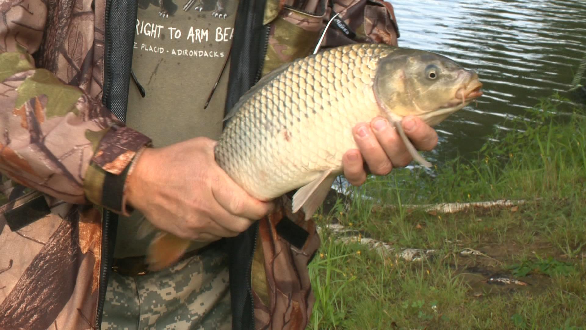 экран рыбака